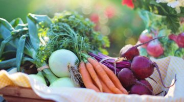 Why You Should Consider Growing Food in Shipping Containers